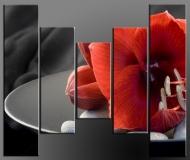 Pětidílné obrazy 125x80cm