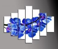 obrazy květiny 7D 210x100cm