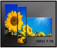 obrazy na plátně 3D 150x100cm