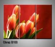 obrazy na plátně 75x35cm