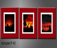 obrazy na plátně 105x35cm