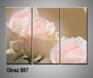 obrazy na plátně 105x70cm