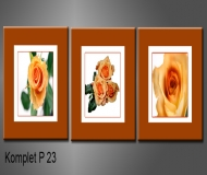 obrazy na plátně 150x50cm
