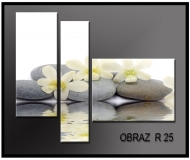 obrazy na plátně 110x80cm