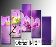 Pětidílné obrazy 125x105 cm